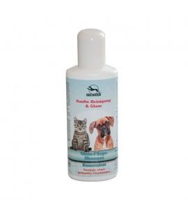 Glanz-Pflege Shampoo Konzentrat