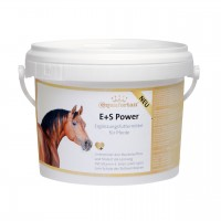 equafortan® E+S POWER 1 kg